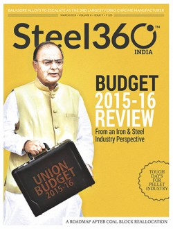 Budget 2015-16 Review