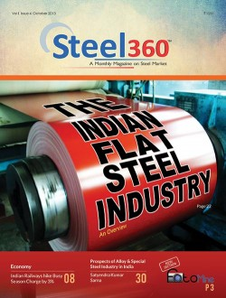 The Indian Flat Steel Industry